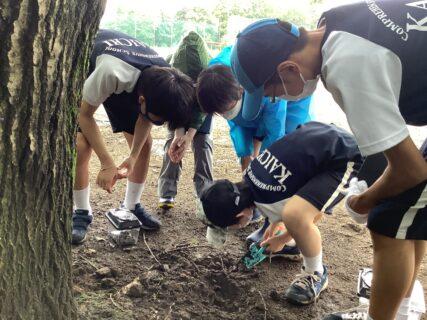 7年生「森のフィールドワーク」